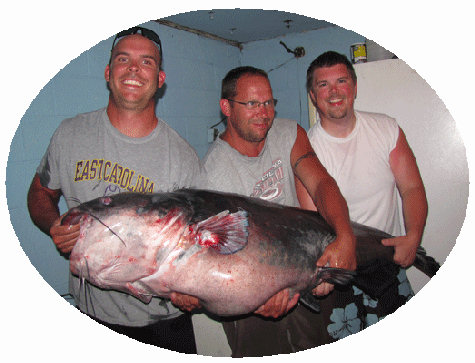 "Virginia's new state and world record blue cat weighing 143 pounds was caught from Buggs Island Lake on Saturday night, June 18, 2011 by Nick Anderson from Greenville, NC. The monster cat was 57"" long and had a girth of 47"".  Congratulations Nick!"